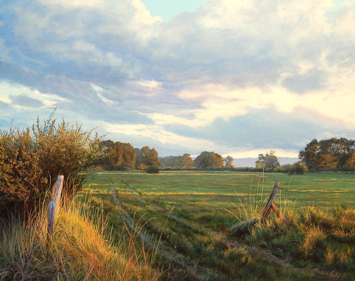 20 Summer Pasture (Forbes Lane)